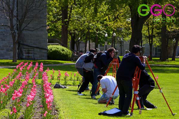 quy trình bảo dưỡng cây tại Egogreen