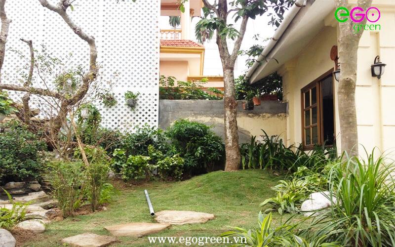 Thi công công trình kiến trúc xanh tại khách sạn Tường Vi Hải Phòng