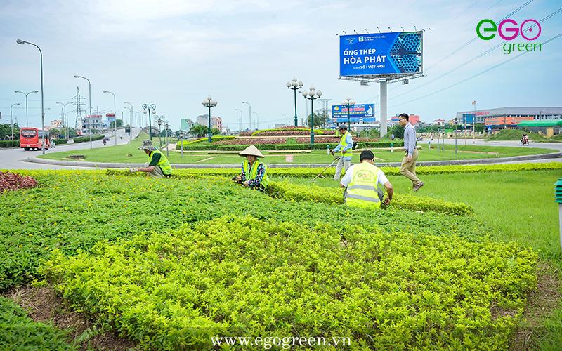 Hình ảnh hoàn thiện thi công cảnh quan nút giao thông Lộc Hòa, Nam Định
