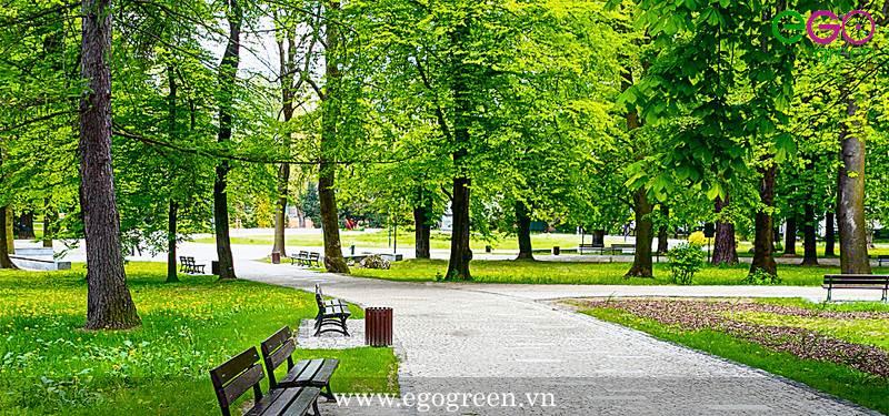 thiết kế cảnh quan công viên