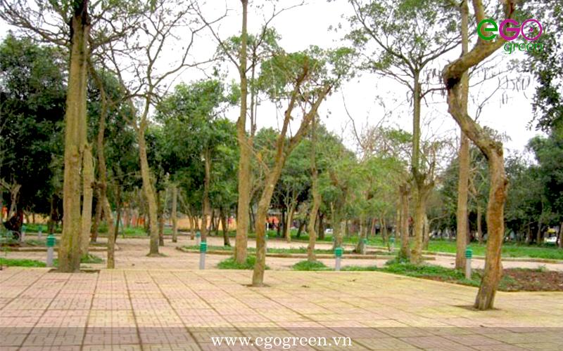 Hình ảnh hoang sơ của công viên Vị Xuyên chưa thi công