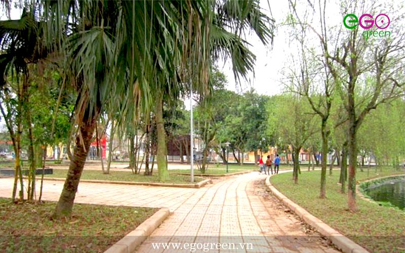 Quá trình thi công dự án cảnh quan xanh- công viên Vị Xuyên