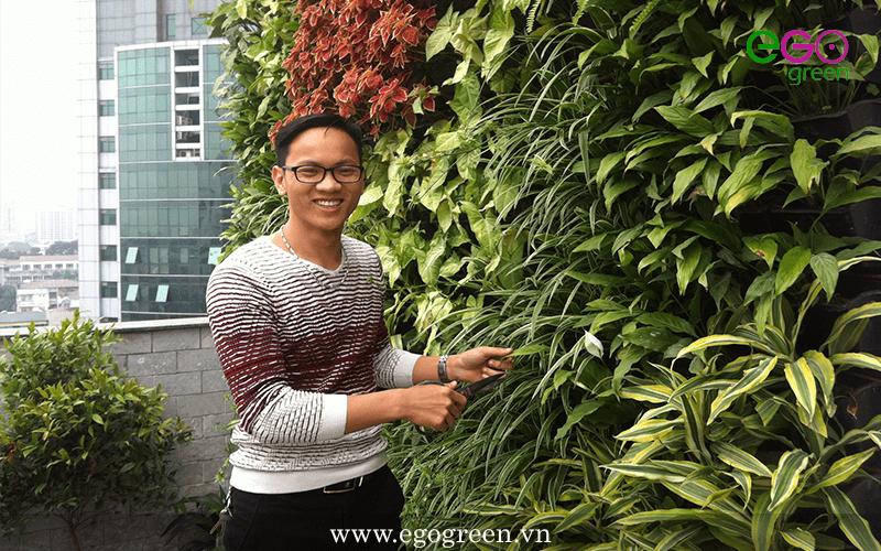 Dự án thi công vườn trên mái 76 - Giảng Võ, Kim Mã, Ba Đình